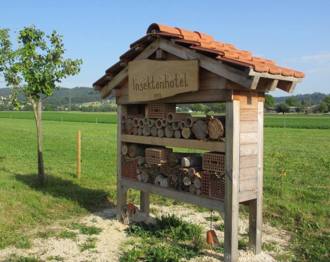 Ökologie und Landschaftspflege